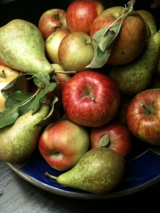jablka a hrusky