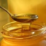 Vynikající vlastnosti medu: Všelék na nemoci i prostředek ke konzervaci