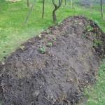 Chcete si uklidit v zahradě? Založte si německou kopu! Neprohloupíte.