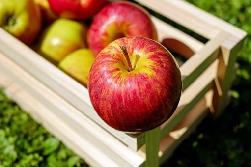 Zázrak jménem jablko