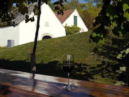 Penzion Pavlov: Poznejte krásu vinařského regionu